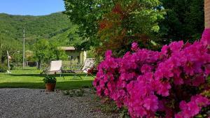 Affittacamere Valnascosta, Guest houses  Faedis - big - 70