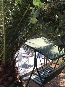 Patmos Villas, Ferienwohnungen  Grikos - big - 175