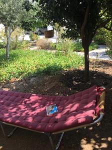 Patmos Villas, Ferienwohnungen  Grikos - big - 183