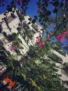 Patmos Villas, Ferienwohnungen  Grikos - big - 181