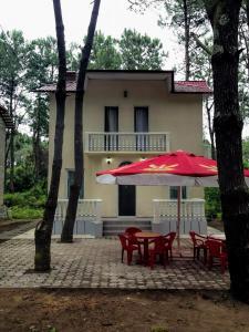 Shekvetili Beach House