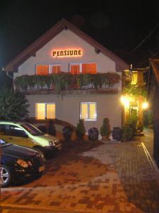 Pension Miorita, Guest houses  Arad - big - 15
