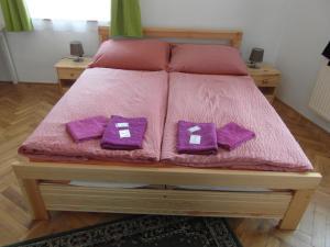 Pension U Soudu, Guest houses  Český Krumlov - big - 25