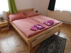 Pension U Soudu, Guest houses  Český Krumlov - big - 8