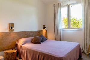 Domaine de Pianiccia, Appartamenti  Favone - big - 7