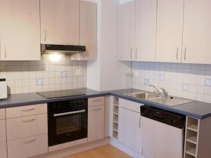 Apartment Rosablanche B21, Апартаменты  Siviez - big - 5