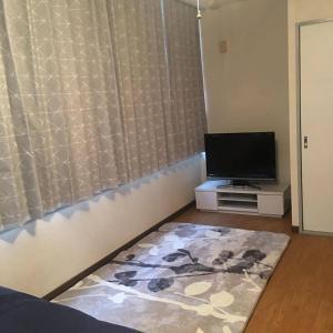 Apartment in Hiroshima 375, Апартаменты  Хиросима - big - 18