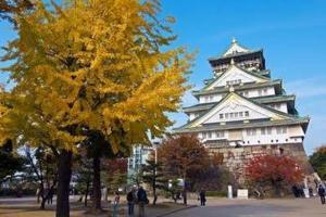 Hammock Theater, Дома для отпуска  Осака - big - 17