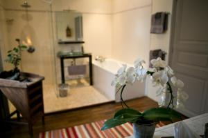 B&B Vassy Etaule, Bed & Breakfast  Avallon - big - 15