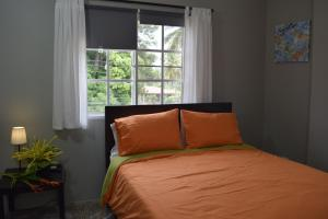 On The Road Aprrtments, Apartmány  Las Galeras - big - 22
