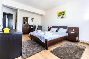Alba Iulia Apartment, Apartments  Bucharest - big - 12