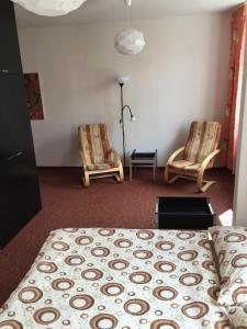 Hotel Pod Stráží, Hotels  Lhenice - big - 18