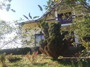 Casa Irina, Ville  Piatra Neamţ - big - 13