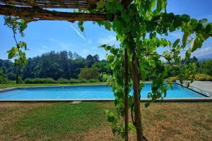 Bramasole, Ferienwohnungen  Anghiari - big - 17