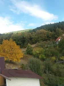 Casa Irina, Ville  Piatra Neamţ - big - 69