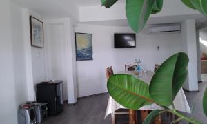 Apartment Setaliste