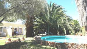 泳池景套房