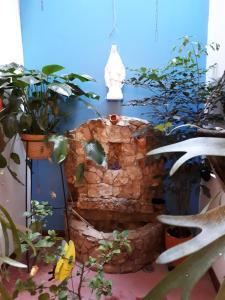 SanTonio Casa Hostal, Penzióny  Cali - big - 69