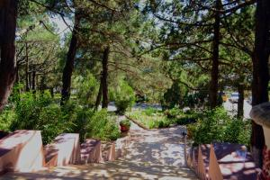 Mozhievielovyi Park, Pensionen  Kabardinka - big - 25