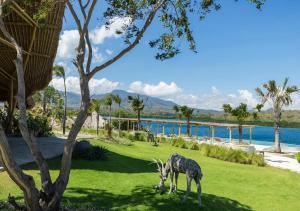 Menjangan Dynasty Resort (18 of 57)