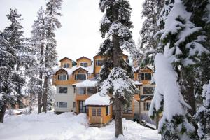 The Rosewood, Hotels  Tangmarg - big - 16
