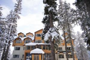 The Rosewood, Hotels  Tangmarg - big - 15