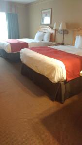 Queen Room with 2 Queen Beds - Non-Smoking