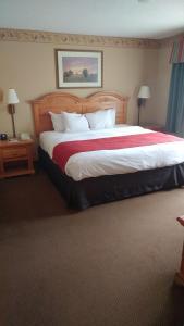 Premium One-Bedroom King Suite - Non-Smoking