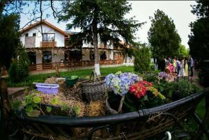 Casa Cu Nuc, Penzióny  Brebeni - big - 32