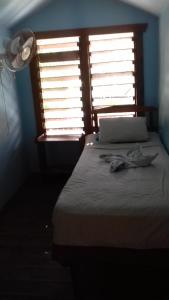Roatan Backpackers' Hostel, Hostelek  Sandy Bay - big - 61