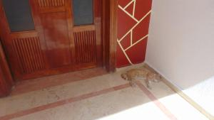 Suite Apartment Fawzi, Appartamenti  Agadir - big - 19