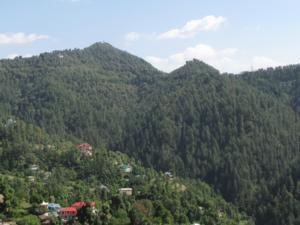 Green Nature ville