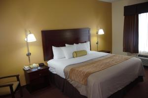Americas Best Value Inn Saint Robert/Fort Leonard Wood, Hotels  Saint Robert - big - 8