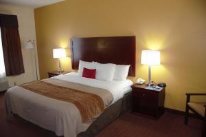 Americas Best Value Inn Saint Robert/Fort Leonard Wood, Szállodák  Saint Robert - big - 12