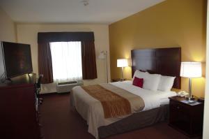 Americas Best Value Inn Saint Robert/Fort Leonard Wood, Szállodák  Saint Robert - big - 29