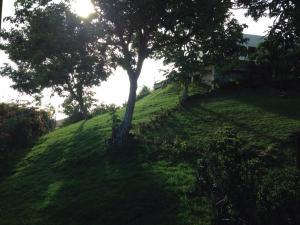 Top of the Hill n°6, Дома для отпуска  Гроз-Иле - big - 23