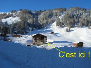 Cosy studio-cabine - Apartment - La Plagne
