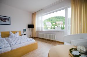Hotel Pension Jägerstieg, Penziony  Bad Grund - big - 30
