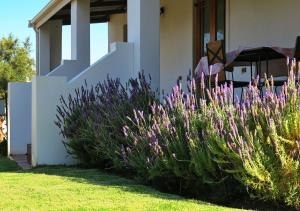 Berluda Farmhouse and Cottages, Ferienwohnungen  Oudtshoorn - big - 66