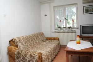 Apartment Sreser 4557b, Apartments  Janjina - big - 5