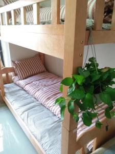 Love Journey Youth Hostel, Hostely  Kanton - big - 15