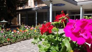 Hotel Terme Villa Piave, Hotely  Abano Terme - big - 11