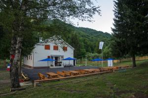 Hostel Mojan