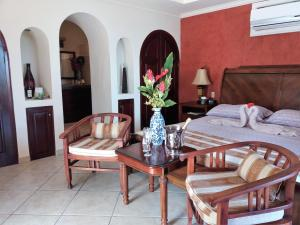 Villa Pelicano, Bed and breakfasts  Las Tablas - big - 8