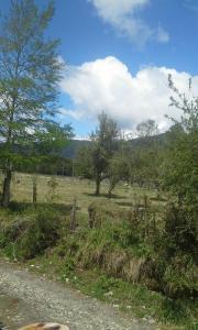 Huilo Huilo Cabañas piedra Alta, Case vacanze  Panguipulli - big - 5