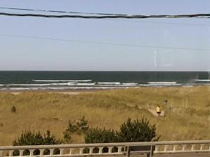 Studio with Ocean View - Pet Friendly #211