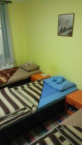 Prenociste Jovanovic, Gasthäuser  Pirot - big - 36