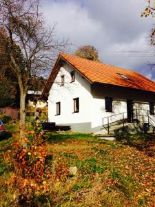 Chata Prázdninový dům Opolenec Opolenec Česko