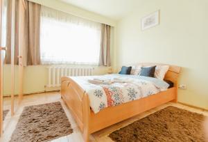 Carpati Premium Apartment
