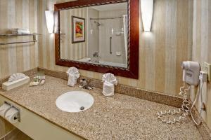 Holiday Inn Asheville - Biltmore West, Szállodák  Asheville - big - 15